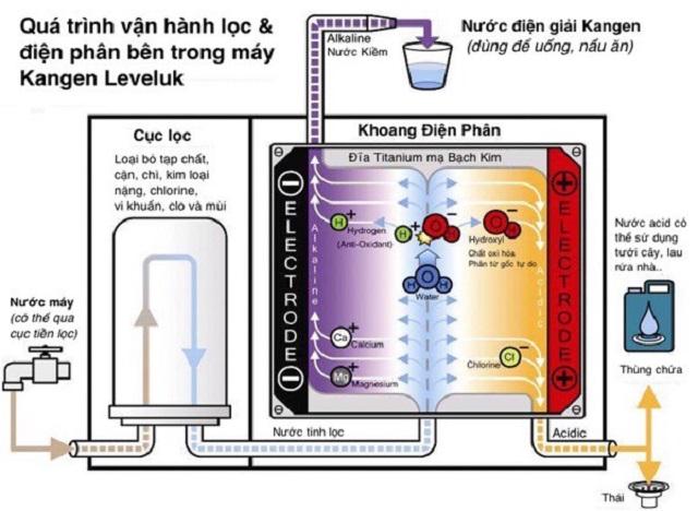 Chu trình lọc và điện phân nước ở dòng thiết bị Kangen Leveluk SD501 Platinum