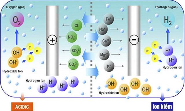 Sơ đồ quá trình điện phân nước ở máy lọc nước Kangen Leveluk SD501